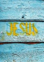 Ježiško na modrom plote